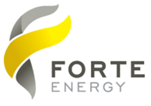 Mauritania Forte Energy to begin uranium mineralization