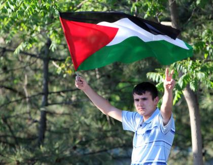 palestine-amended-draft
