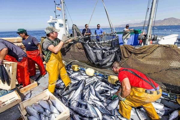 Moroccan-Spanish Joint Committee Backs Renewal of Morocco-EU Fisheries Deal