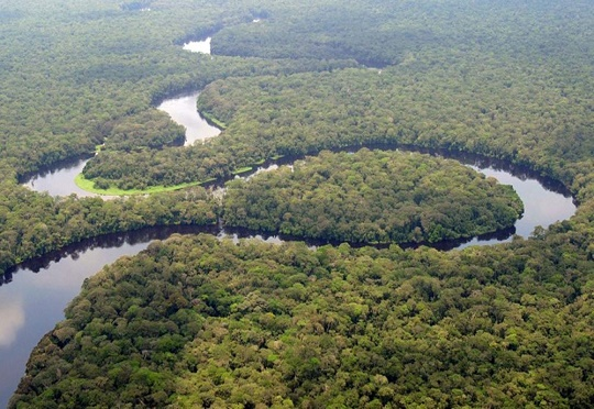 Morocco to Conduct Feasibility Study on Preservation of Congo Basin
